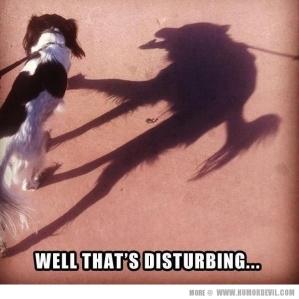 Disturbing Dog