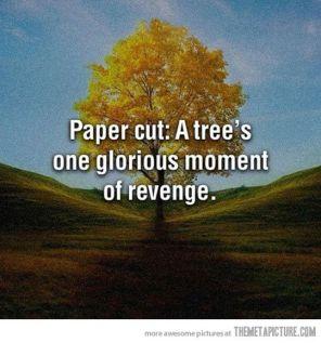 Paper Cut.jpg