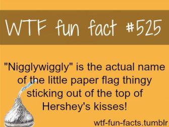 Niggly.jpg